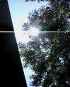 20060814_山中湖3.jpg