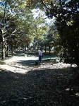 20071118_散歩.jpg