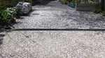 20120415_桜の絨毯.jpg