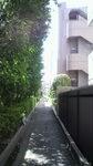 20110326_近所の小道.jpg